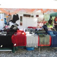 Il nostro stand alla Festa della Zucca 2015 a Venzone